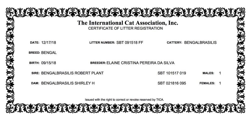 Shirley H - Litter Registration (15.09.2018).jpeg