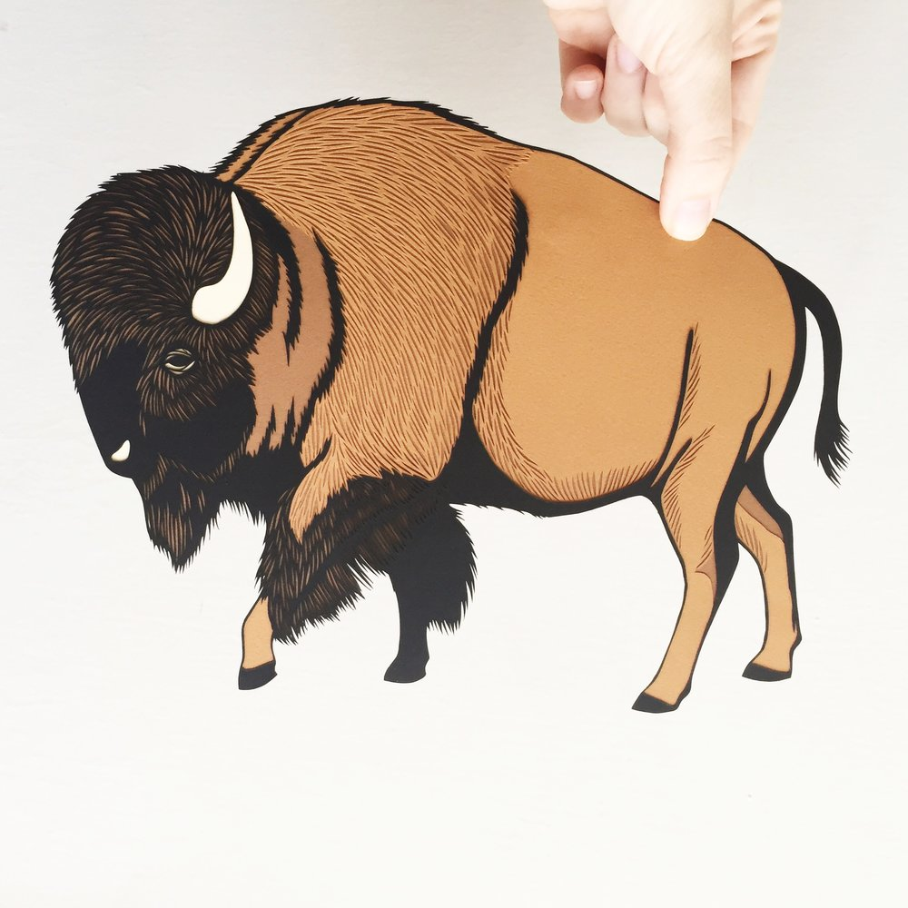 bison: original papercut art by bird mafia artist, emily brown