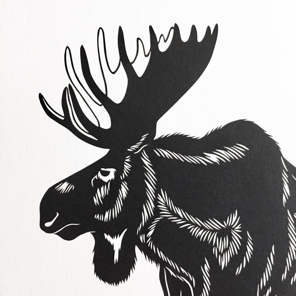 moose: original papercut art by bird mafia artist, emily brown