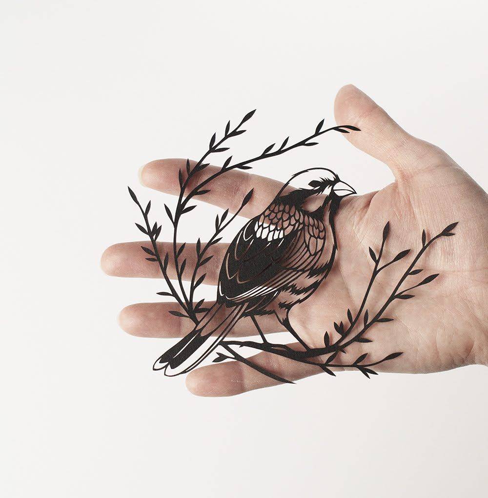Art_littlebird_sm.jpg