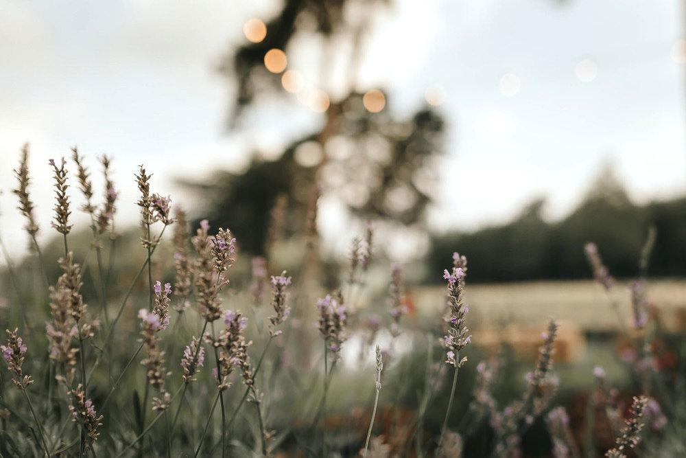 brook-farm-cuffley-outdoor-wedding-essex-25.jpg