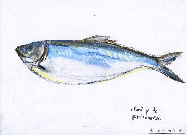'Durf je te positioneren' #debeeldvormers #horizoncollege #eersteharing #pastelonpaper #beautifulfish #vis #tekening #positioneren #alseenvisinhetwater #artpartner