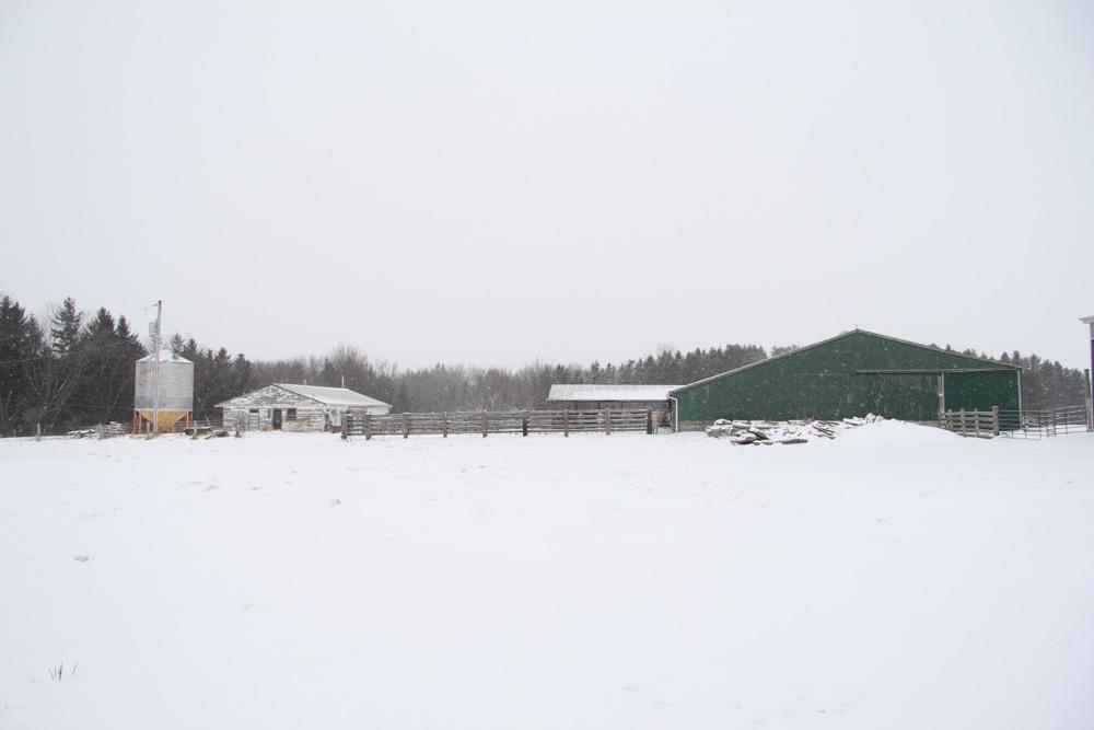Barn Yard - Oshawa