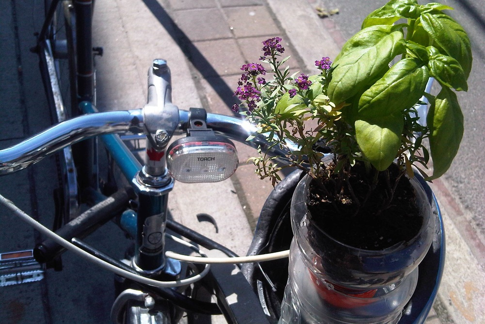 Bike-and-flower