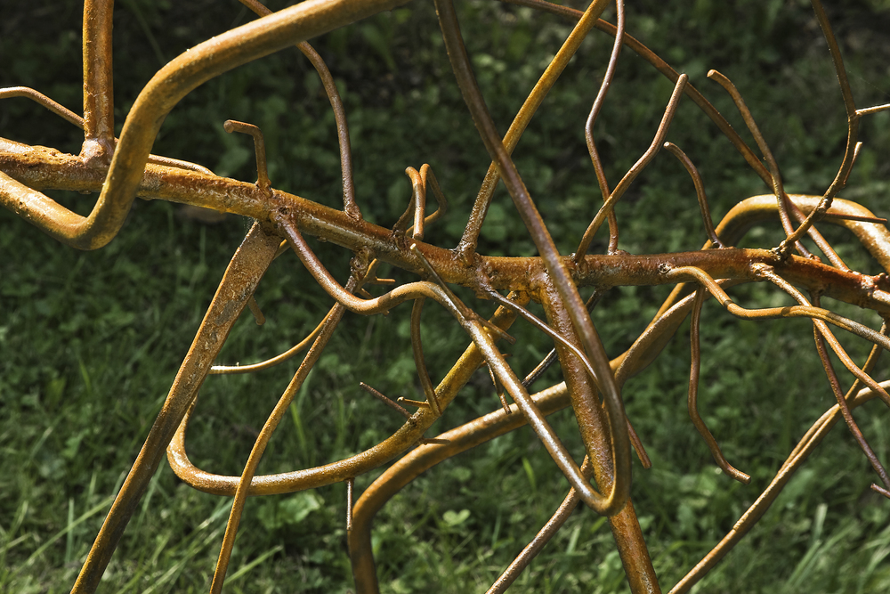 Flora, Growing Inspirations - detail, 2009