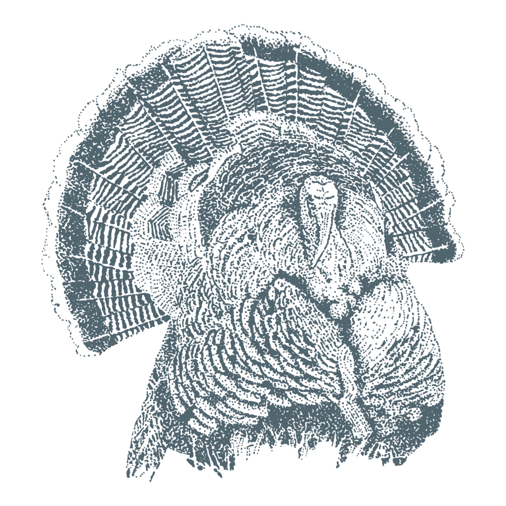 The Pure Meat Company - turkey_Biddenden blue.png
