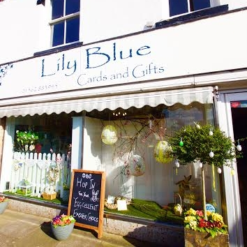 Lily Blue - Hagley, Stourbridge