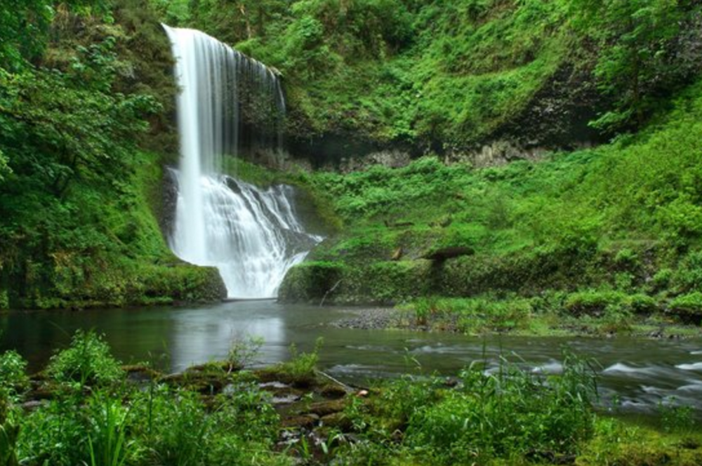 Photo: Silver Falls State Park
