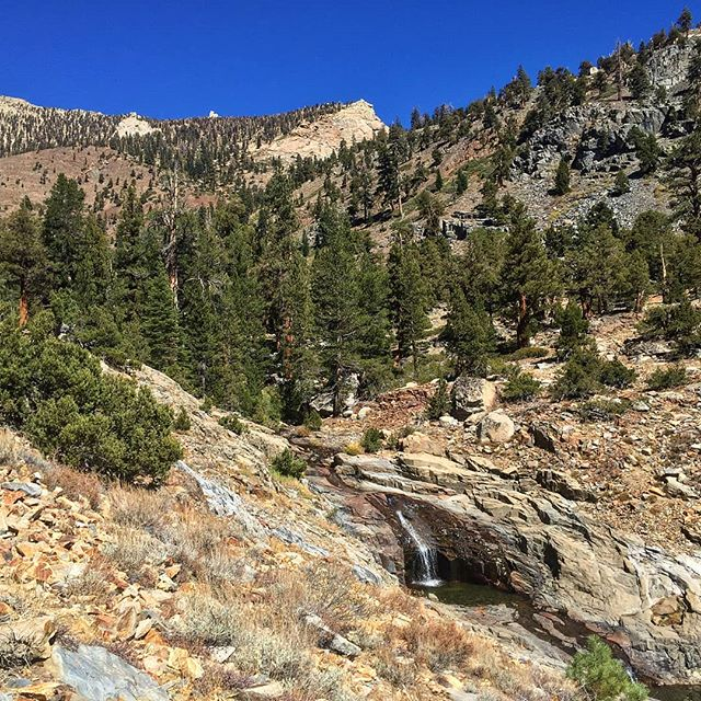 When the summer heat hits, our Sierra provides endless opportunities to cool off! #sierramappingproject #highsierra #sierranevada #gps #theodoresolomonstrail #thruhike
