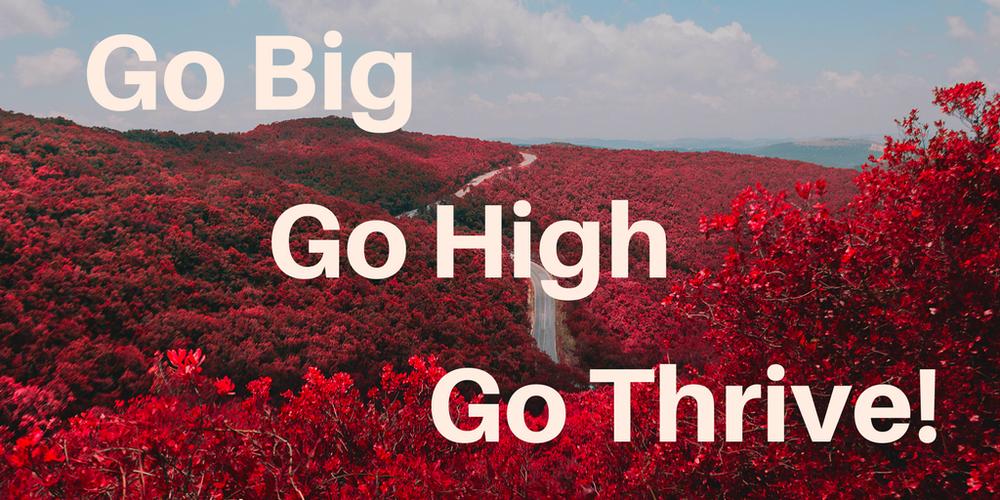 TCW-Go-big.png