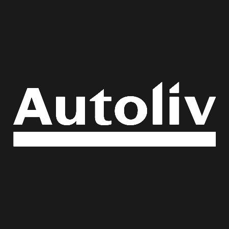 bGiant_Clients_Autoliv.jpg