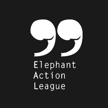 bGiant_Clients_Elephant_Action_Leauge.jpg