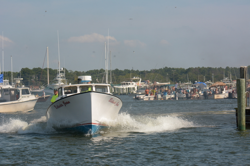 boat docking-463.JPG