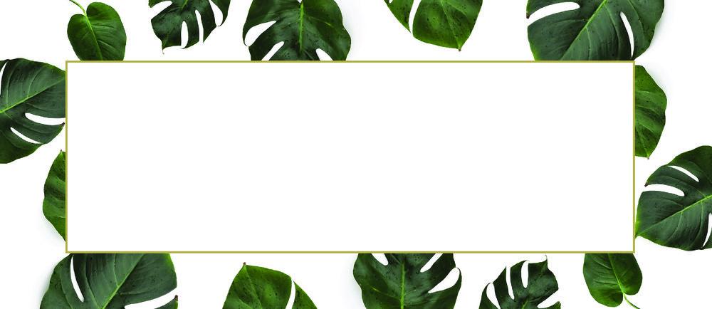 SkinTouch_Envelope-01.jpg