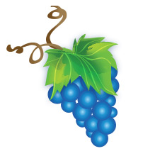 grapes-illustration.jpg
