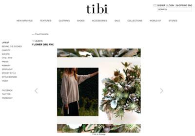 TIBI BLOG – JANUARY 2015
