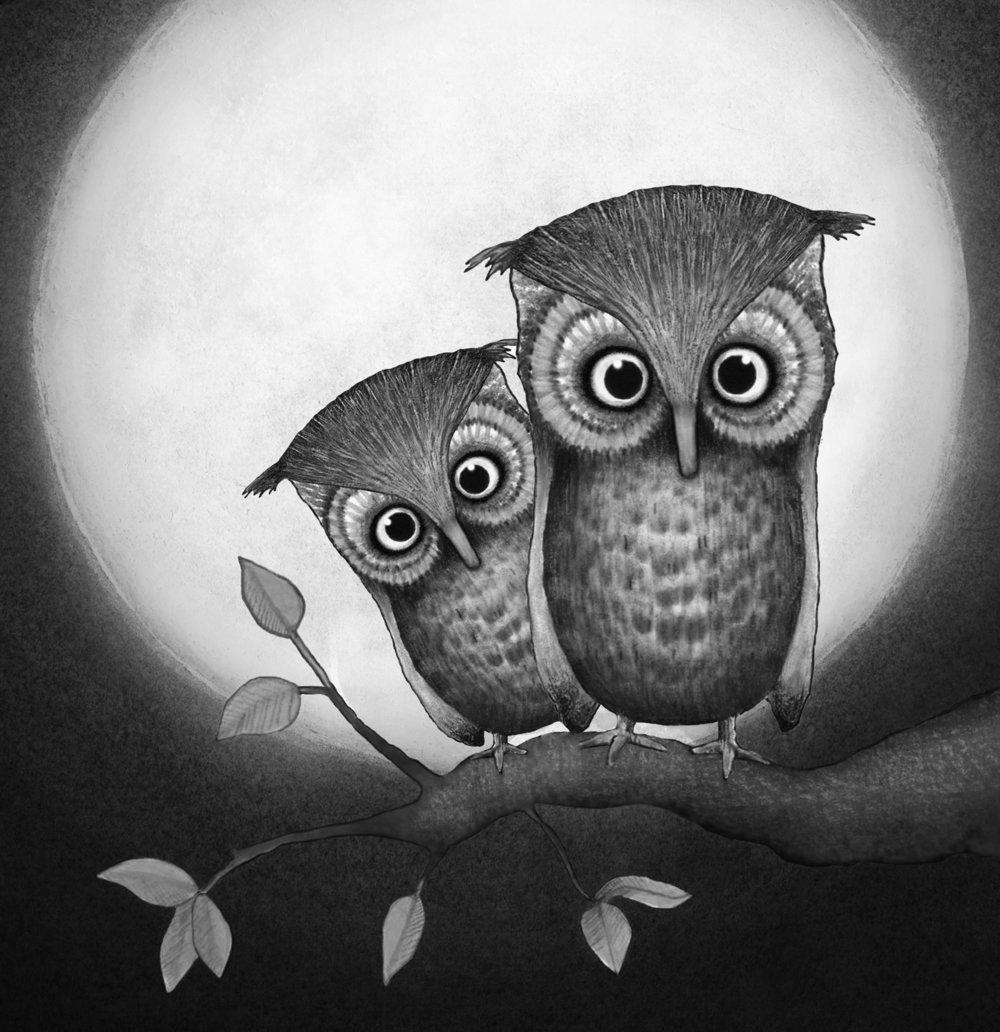owl_01A_portfolio_BW.jpg