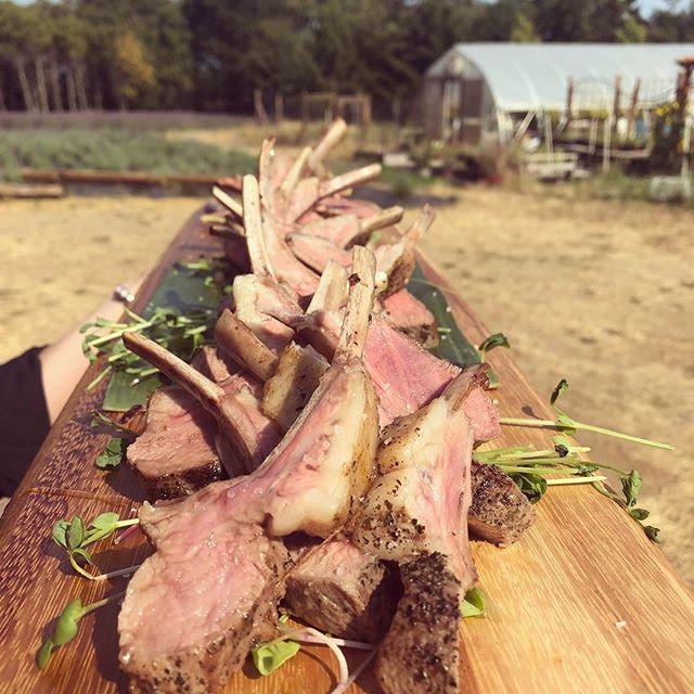 On the Lamb! Smoked peppercorn, green tea crusted lamb pops with Bilston creek honey and sea salt.  @bilstoncreekfarm #summerwedding #westcoastwedding #bilstoncreekfarm #lambpops #farmfresh #metchosin #westcoastcatering #openwatercatering