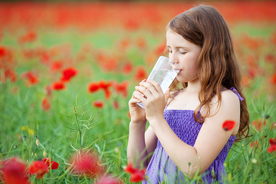 Environmental & Toxin Exposure