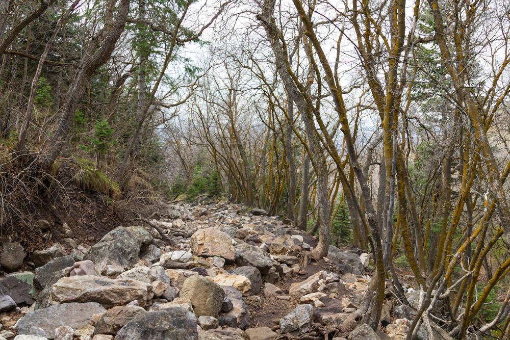 Hike-Edits-115.jpg