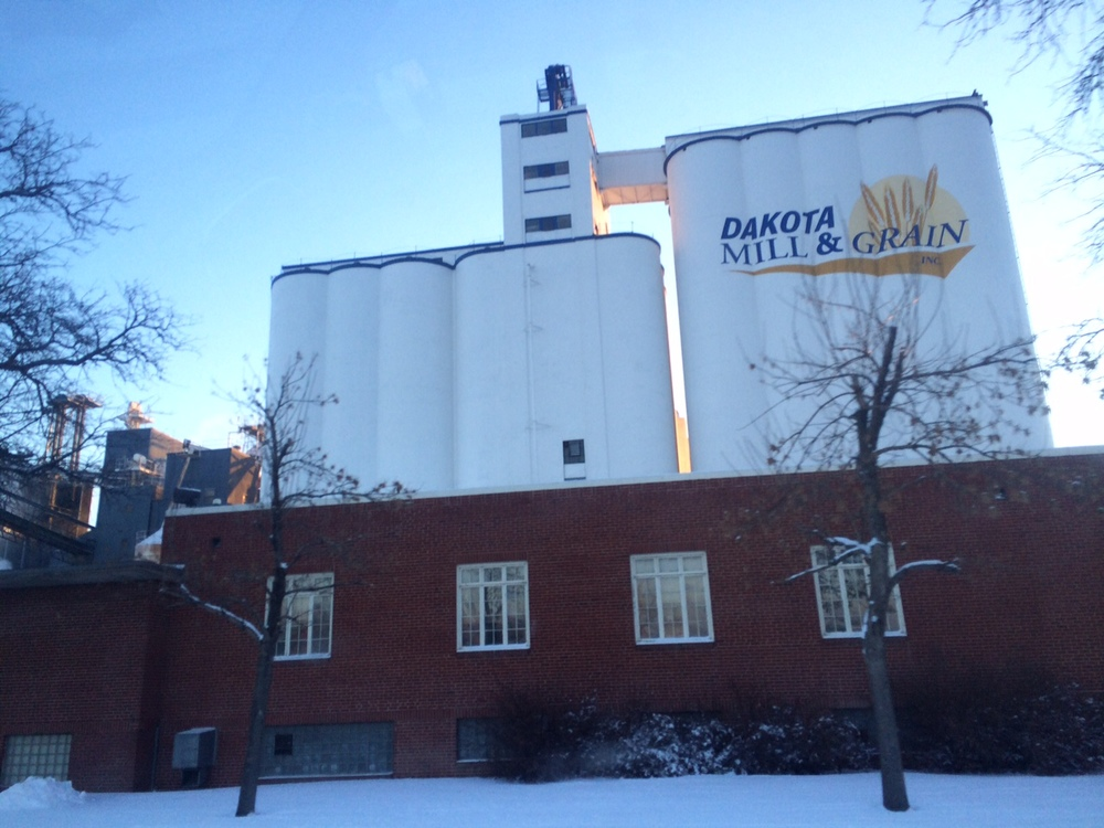 Dakota Wheat