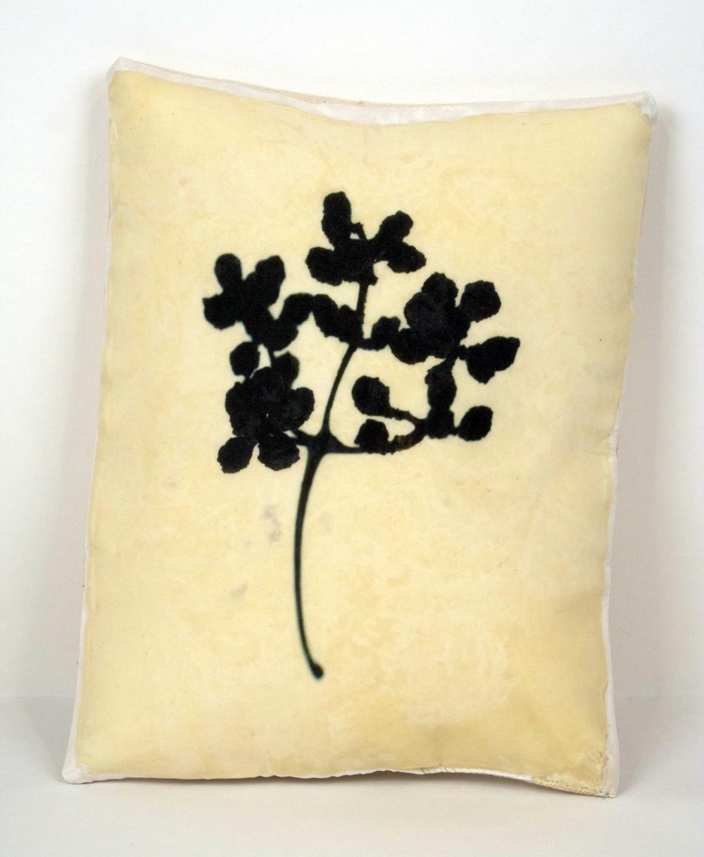 Seed_pillow.jpg
