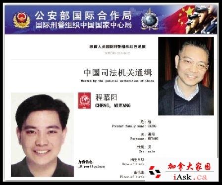 Michael ching mo yeung