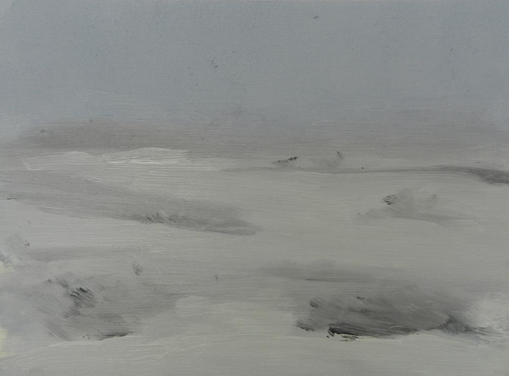 Snow Storm, oil on board,265 x 195 mm,  2014
