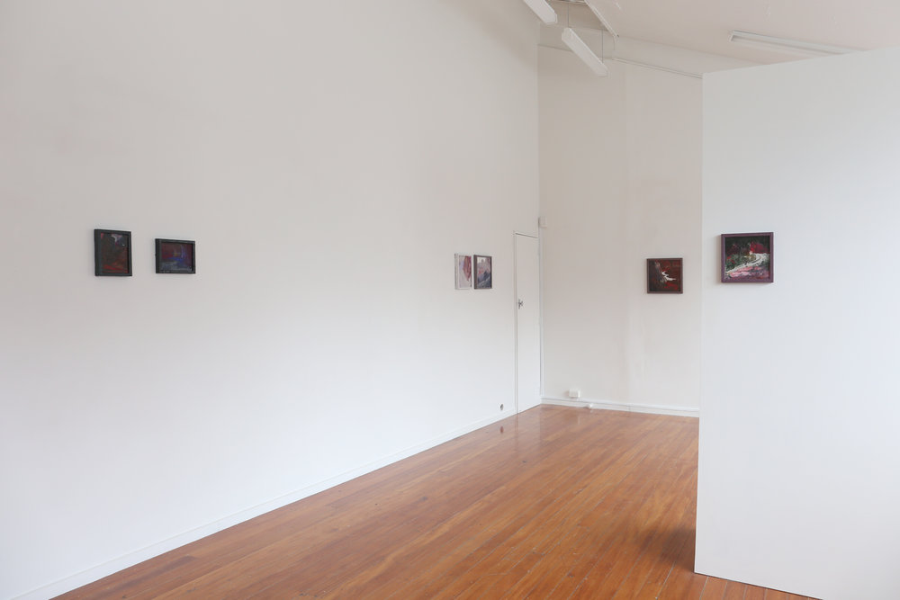 Installation shot of   Water Park  , Next Gallery, 2017.(Photographed by Daegan Wells).