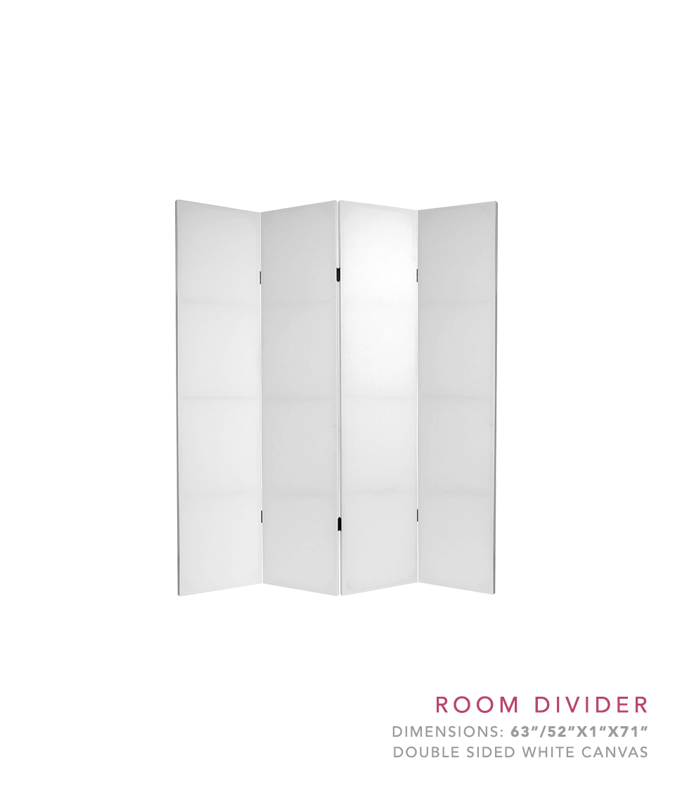 website room divider.png