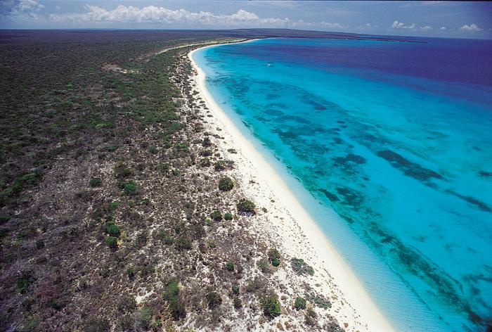 Bahia de Las Águilas. Aerial View 01