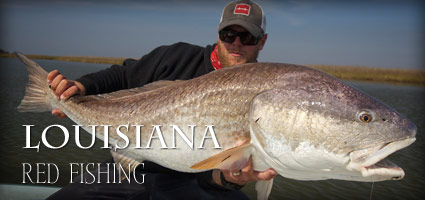 Photo source:    www.louisianaflyfishing.com