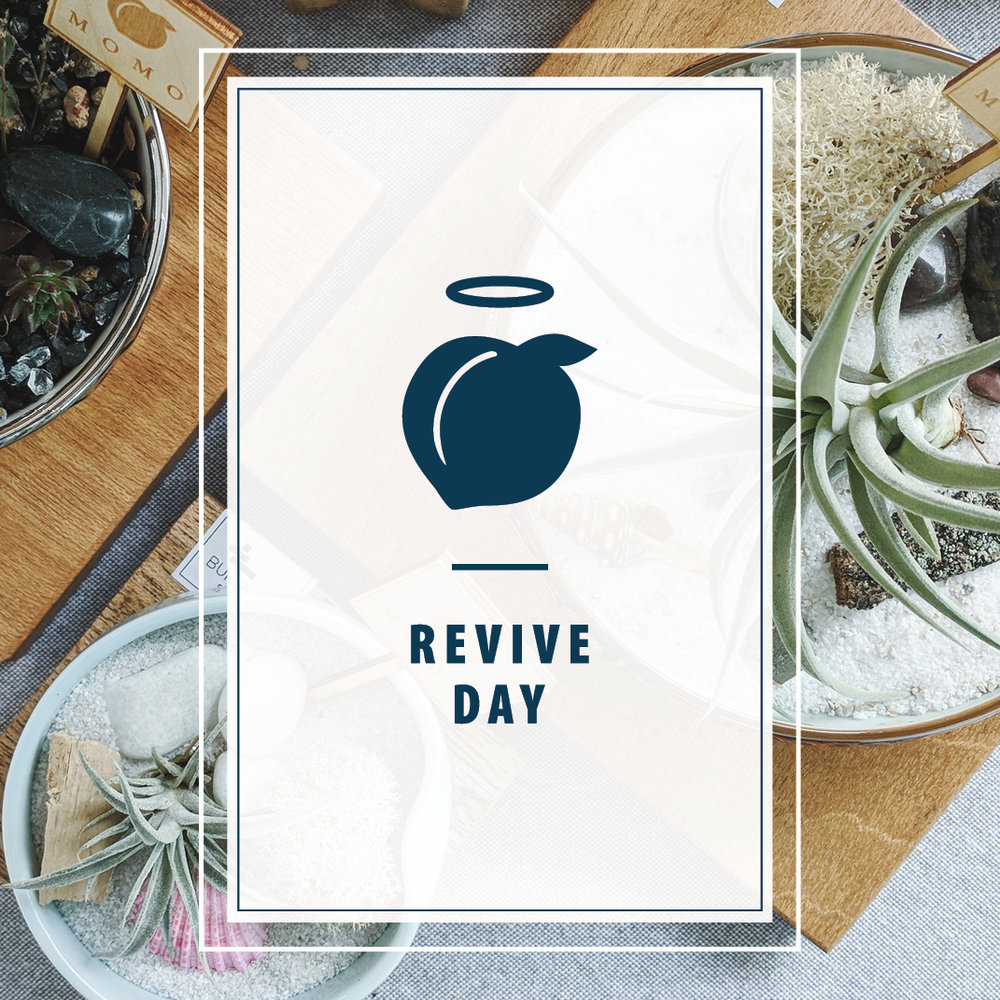 It's Here! - Join us for our very first Momo Revive Day hosted by our friend's at Miemiko Atelier!