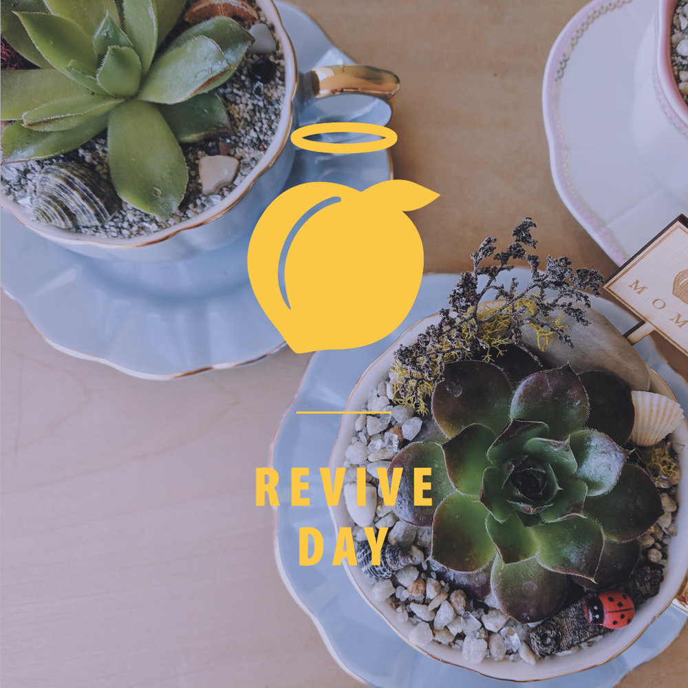 It's Here! - Join us for our Spring Revive Day hosted by our friend's at Miemiko Atelier!