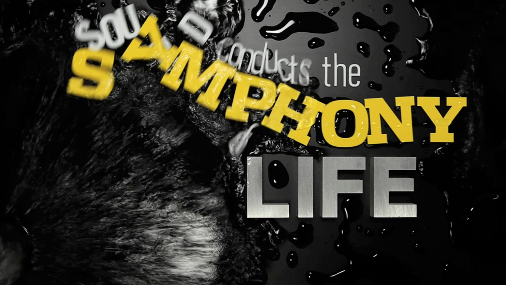TFF5_Symphony_wet.jpg
