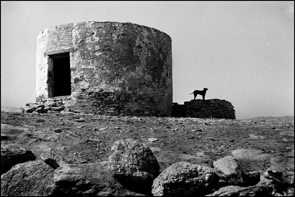 Mykonos, Greek Island    Photograph by Frank Habicht