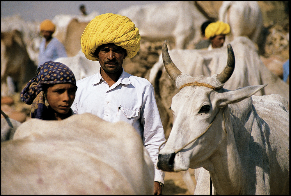 Jaisalmer India 1989  Photo Frank Habicht