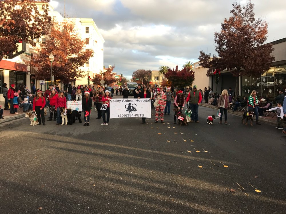 "VAH Staff + ""Dogs from around the world"" at the 2018 Merced Christmas Parade, December 1, 2018"