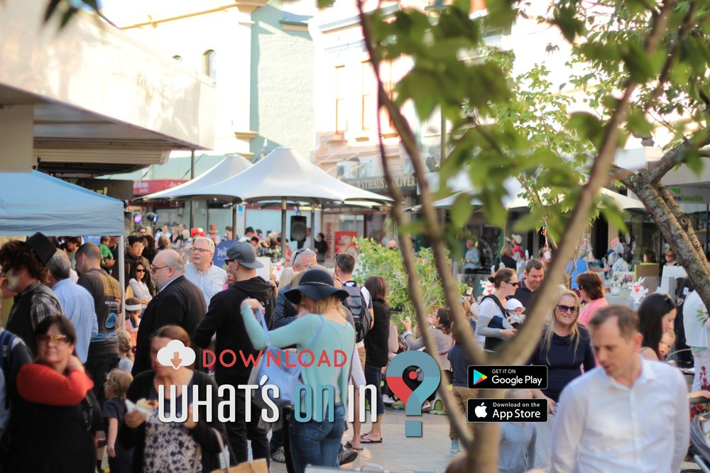 Mad Hatter's Twilight Markets, Launceston, Tasmania 2016 - What's On In App 029 IMG_8470.jpg