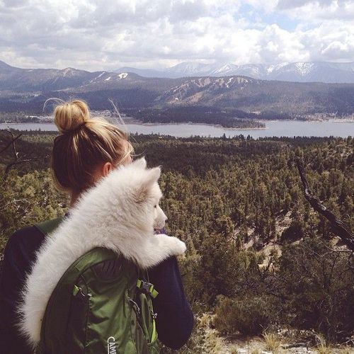 Pretty view and a pup www.feelslikeom.com