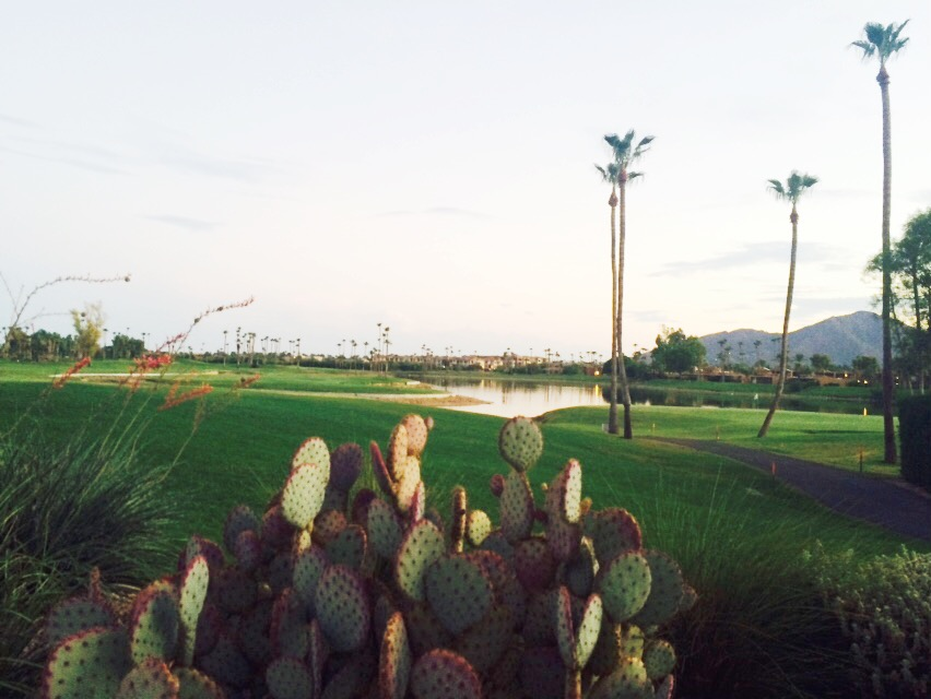 arizona desert golf.JPG