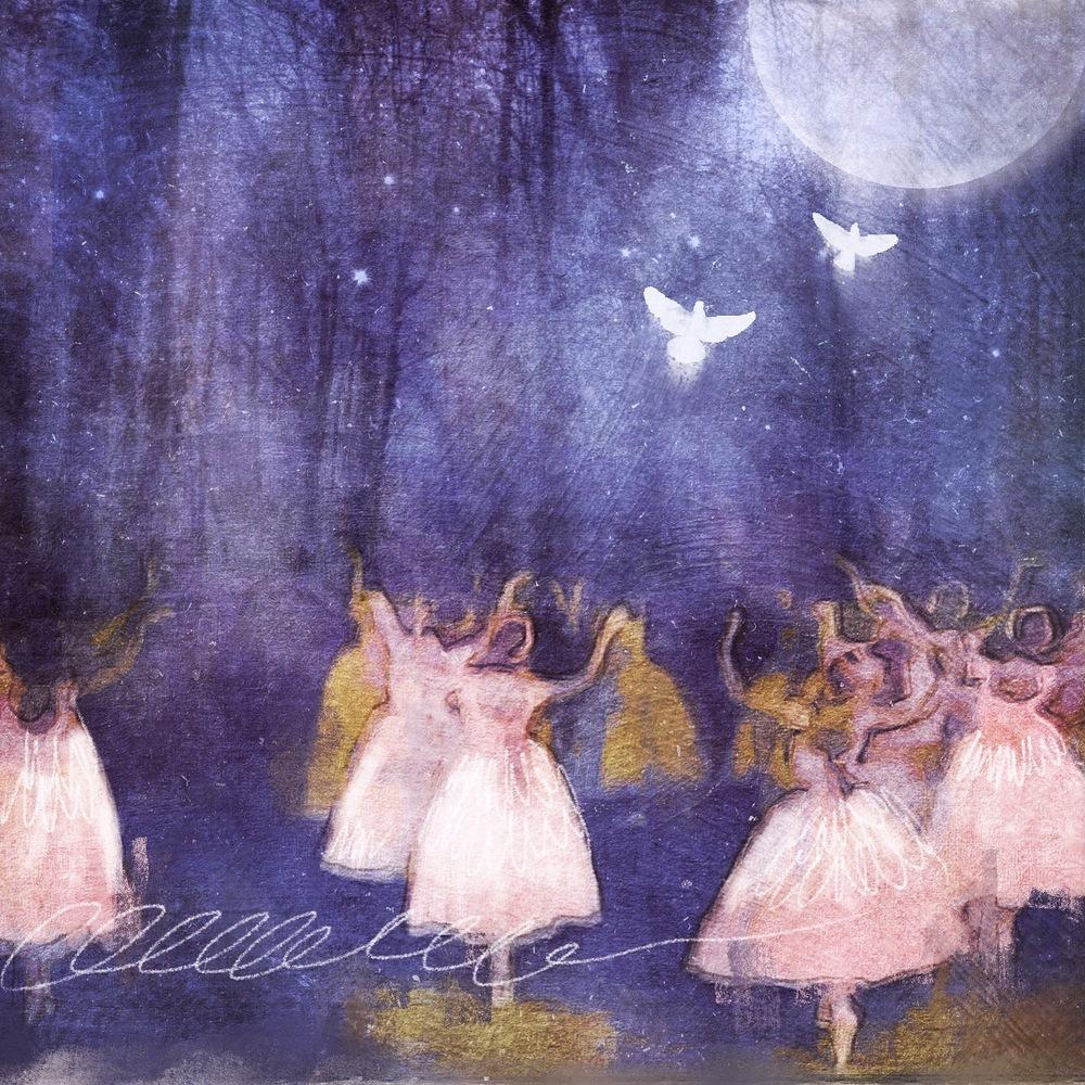 moonlight ballet.JPG