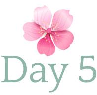 day-logo-5.jpg