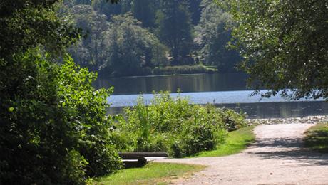 Deer Lake Park 10.jpg