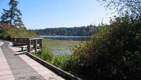 Deer Lake Park 12.jpg