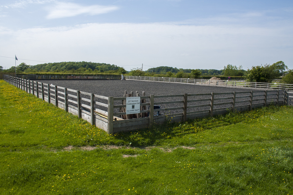 york-riding-school-outdoor-arena.jpg