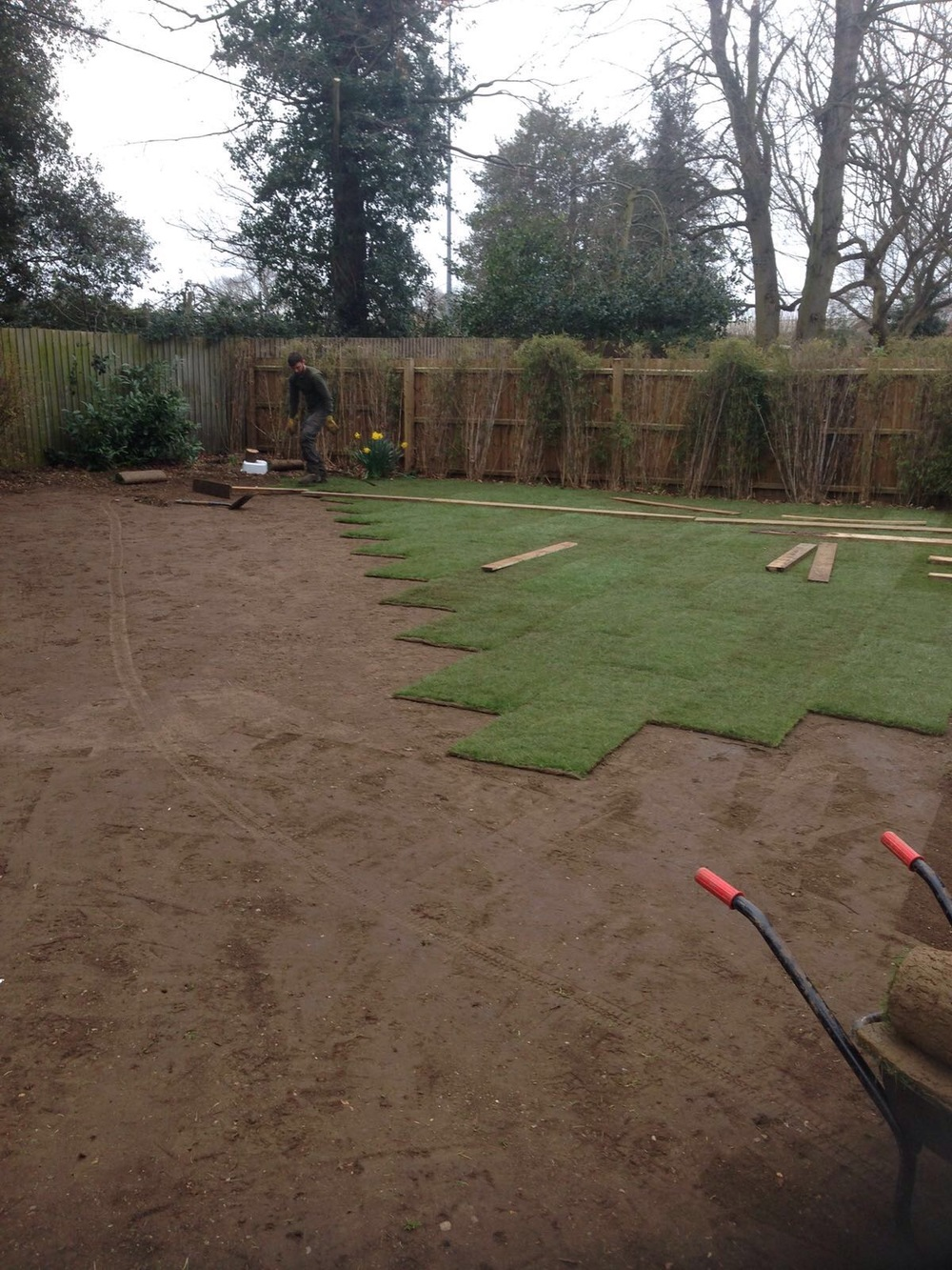 Greenacre Trees & Landscapes Ltd Turf 1.jpg