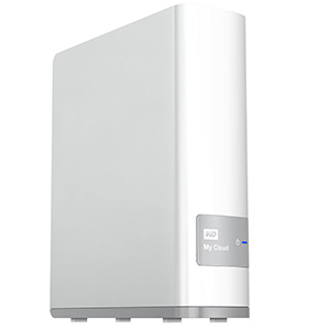 I have a 4TB WD MyCloud for permanent access