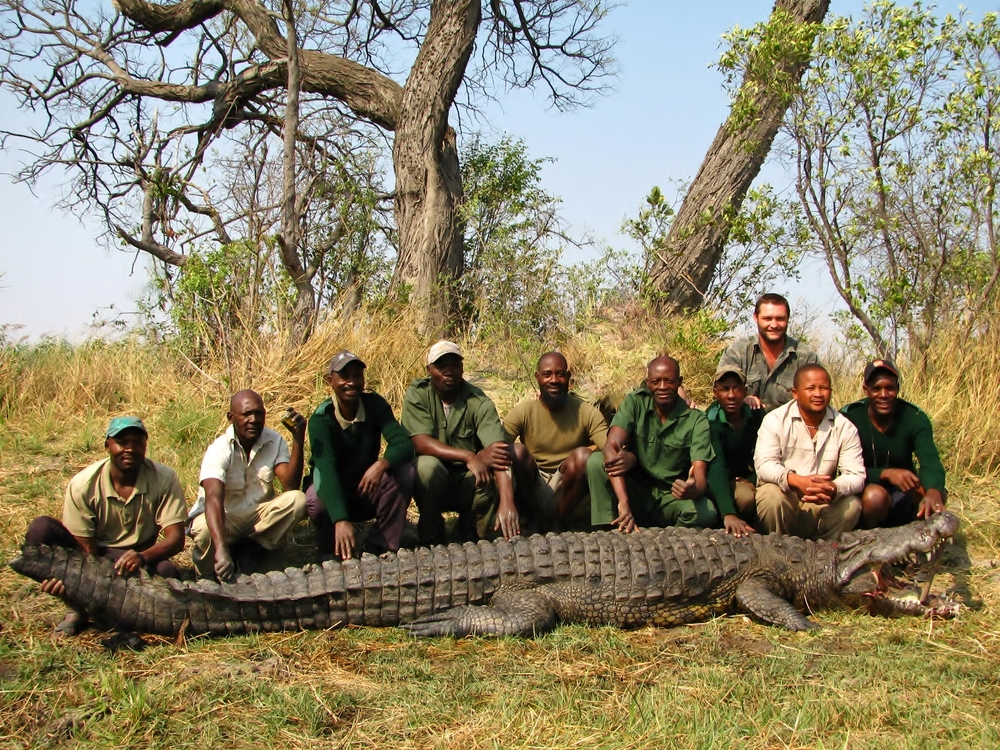 """A 15 foot man-eating croc with hunting party. This croc had killed well over 7 people."""