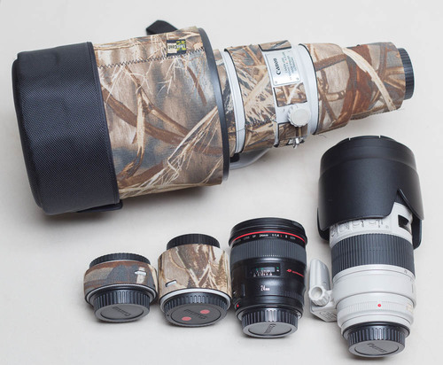 My wildlife kit:, 500mm Super-telephoto lens, 70-200 telephoto lens, 24mm wide angle lens. Each has its job...  I never go with JUST the 500mm